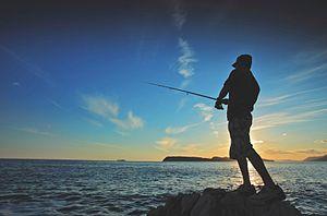300px-Fishing_1